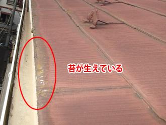 足柄上郡大井町山田 スレートの塗膜劣化で苔が生えている