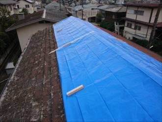 寒川町岡田にて台風被害で棟板金と化粧スレートが飛散した為葺き替え工事のご提案、着工まで時間がかかる為養生を実施しました