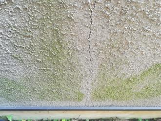 モルタル外壁のクラックと苔の付着