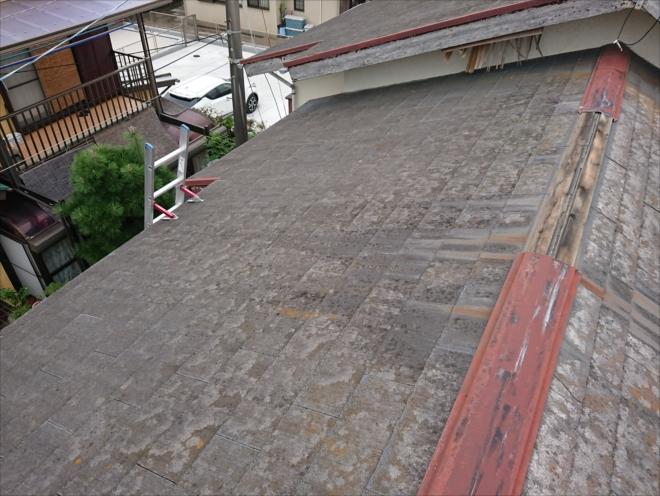 屋根に上がり点検している様子
