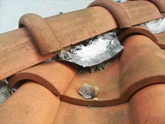 丸瓦に詰められた漆喰が剥がれかかっている