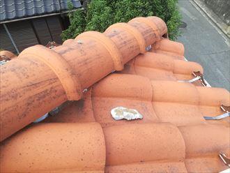 瓦屋根の上に白い物体があるときはメンテナンスが必要な証拠です