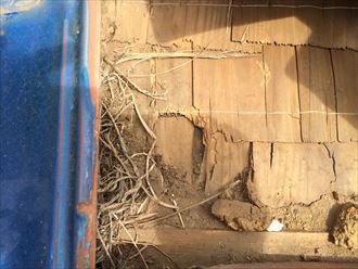 瓦が飛ばされて下葺き材が破損