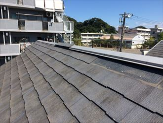 屋根に上がって状況を把握します