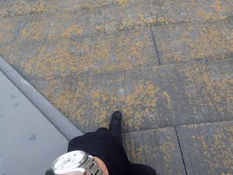 綾瀬市深谷南 スレートの表面に苔が生えている