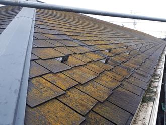 厚木市下荻野 スレート屋根に苔が生えている