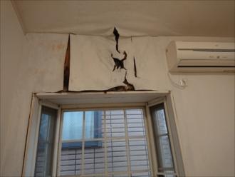天井と壁のクロスがふやけてしまいボロボロでした