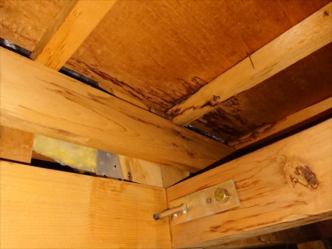 点検口から覗くと天井に黒く染みている跡があります
