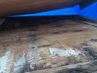 ブルーシートを剥がすと腐食した下地が現れました