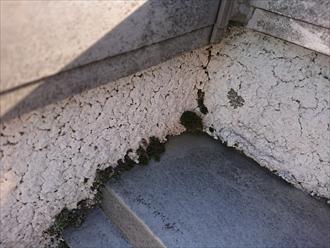 屋根と外壁の取合いに藻が生えてしまっている