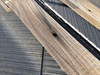 海老名市国分寺台で屋根の棟板金が飛散、貫板を固定している釘も抜けてました