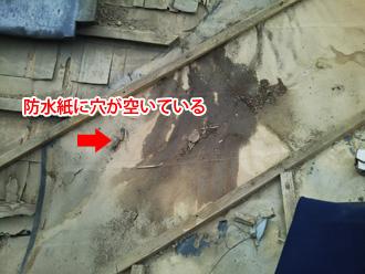 秦野市名古木 谷板金の防水紙が穴が空いている