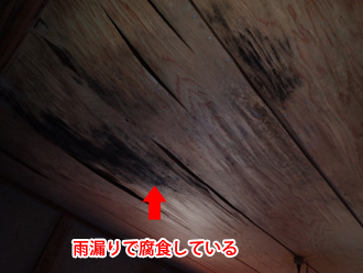 厚木市森の里青山 雨漏りで天井板が腐食している