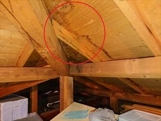 藤沢市下土棚にて雨漏り調査、屋根塗装時にきちんと縁切りがされていないと雨漏りに繋がり屋根葺き替えが必要になってしまいます
