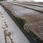 雨樋の近くは雨水が集まる所ですので、他の場所よりも屋根材が傷みやすい