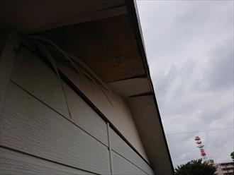 軒天が剥がれているだけではなく下地も腐食する前に解体し新しくするか重ね張りが一般的です