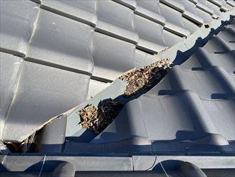 瓦屋根に枯葉