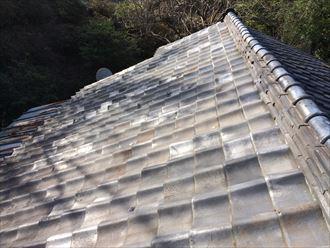 屋根面に落ちている枯れ葉やゴミに紛れて漆喰が落ちている