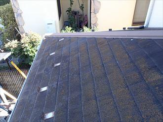 鎌倉市大船で化粧スレート屋根を調査、全体のカビや藻は劣化のサインです
