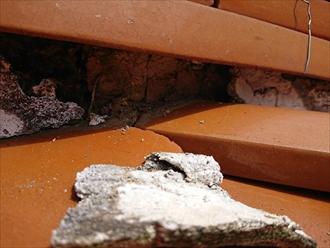 平塚市田村にて瓦屋根を調査、庭先に落ちていた白い塊は棟から剥がれてしまった漆喰でした