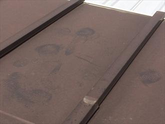 大和市西鶴間で瓦棒葺き板金屋根の点検、板金表面のチョーキングと釘抜けが発生しておりました