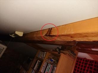 屋根裏天井の梁や垂木にも雨染みがございます