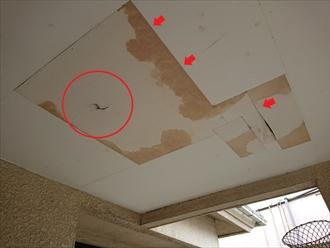 天井材からの雨漏り