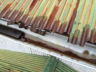 葉山町堀内で壊れた軒先を発見、屋根材と雨樋の交換が必要な状態でした