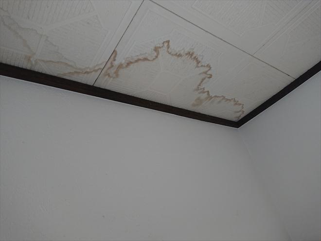 室内天井に雨染みが見えたら早急に傷みが広がる前に屋根工事や防水工事を行いましょう