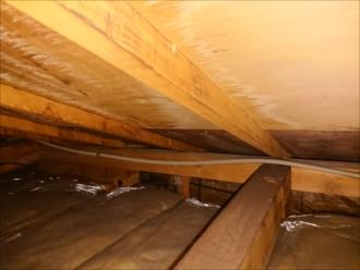 屋根裏に入る現地調査は信頼に値すると思います