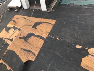 野地板 腐食部分