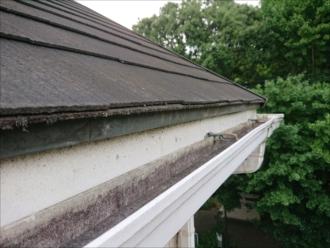 梯子を架けて軒先から屋根調査
