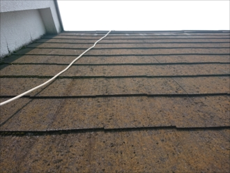 軒先に梯子を架けて屋根に上がります