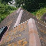 切妻屋根で棟違いの屋根全体に苔やカビが散見されます