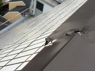 葉山町下山口のマンション屋上にある、板金の笠木が風により破損しました
