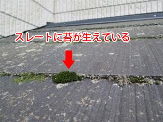 屋根には耐久性や耐候性といった機能が必要