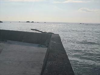 沿岸部は塩害に注意