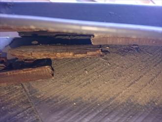 木製の貫板は経年で交換が必要な時期が必ず訪れます