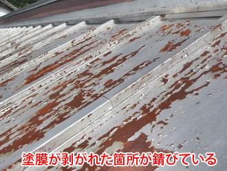 トタン屋根の塗膜が剥がれてサビが出ている