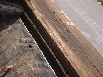 大和市桜森にて強風被害、棟板金が飛散し貫板も屋根上に散乱してしまておりました