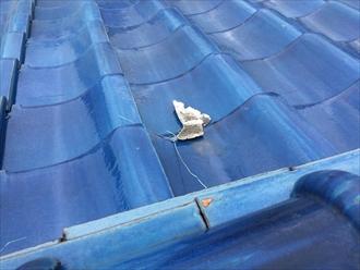 屋根面に漆喰が転がっている