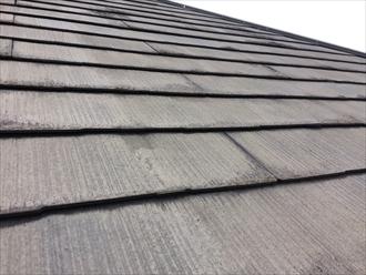 茅ヶ崎市松林でアスベストの含まれたスレート屋根の点検、過去に塗った塗膜が剥がれておりました