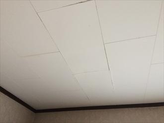 白い天井は分かりづらい雨漏り