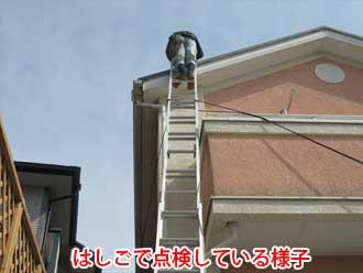 はしごを使って点検している様子