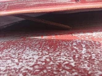下地の貫板は腐食していました
