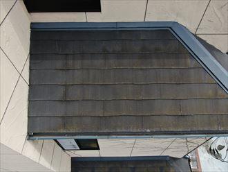 北側にある2階の屋根も苔が多く生えていました