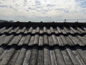 セメント瓦の屋根面に漆喰が転がっている