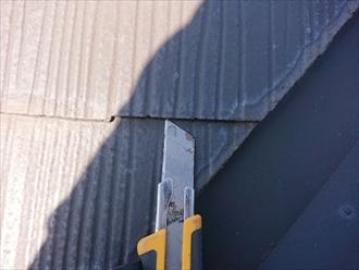 縁切りされていない塗装された屋根