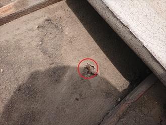 瓦内部には埃が多く入り込んでおり、水が正常に流れ出ていない可能性も