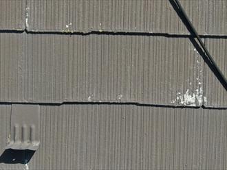 過去に塗られた塗膜が艶を失っている